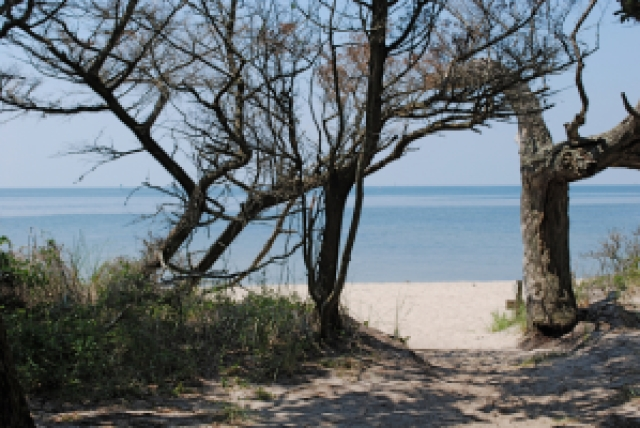 springers pt beach - Things to Do in Ocracoke by North Carolina travel blogger I'm Fixin' To