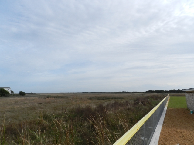 The Ocracoke Preservation Society recently transferred this tract east of the Community Park ball field to the Coastal Land Trust. Photo by C. Leinbach