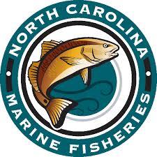 NC Marine Fisheries