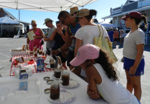 The quest is on to discover the best tasting fig preserves Saturday at the Ocracoke Fig Festival.