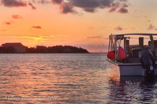 Melinda Fodrie Sutton captured this sunset on Silver Lake photo last night. September on Ocracoke is great for sunsets, the water is still warm and the beach and weather beautiful.