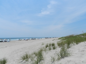 The Ocracoke beach south of the Day Use Area, also known as the Lifeguard Beach. Photo: C. Leinbach